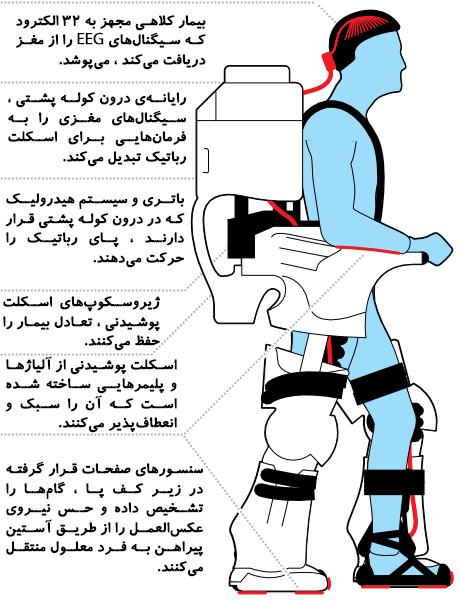 قسمتهای مختلف اسکلت پوشیدنی