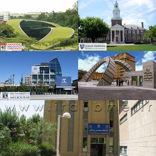 رتبه جهانی دانشگاه امیرکبیر در تعداد اعضای هیئت علمی رشته مهندسی پزشکی
